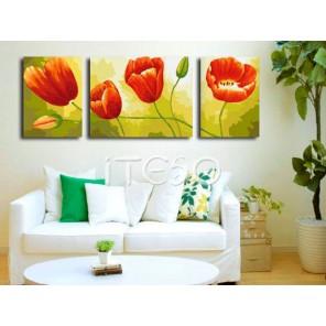 Алые тюльпаны Раскраска по номерам акриловыми красками на холсте Iteso