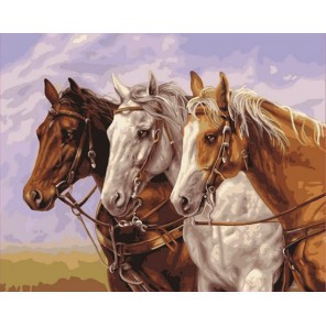 Тройка Раскраска картина по номерам акриловыми красками Plaid