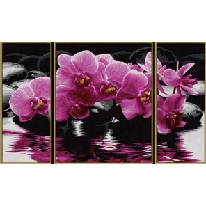 Орхидеи Триптих Раскраска по номерам акриловыми красками Schipper (Германия)