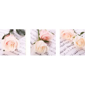 Цветы и музыка Триптих Раскраска по номерам на холсте Menglei
