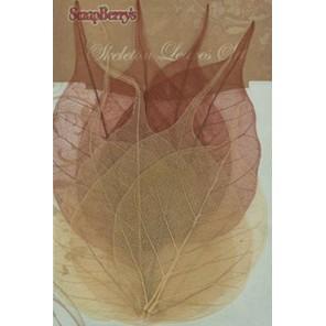 Коричневые листочки скелетированные из бананового дерева Украшение для скрапбукинга, кардмейкинга Scrapberry's