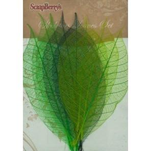 Оттенки зеленого Листочки скелетированные из каучукового дерева Украшение для скрапбукинга, кардмейкинга Scrapberry's