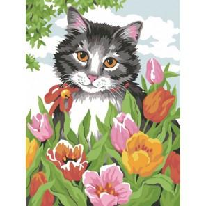 Кошечка в тюльпанах Раскраска по номерам акриловыми красками на холсте Color Kit