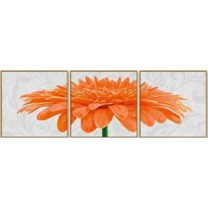 Хризантема Триптих Раскраска картина по номерам ( Картина ) акриловыми красками Schipper (Германия)