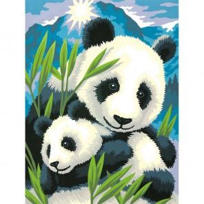 Панда и детеныш Раскраска (картина) по номерам Dimensions