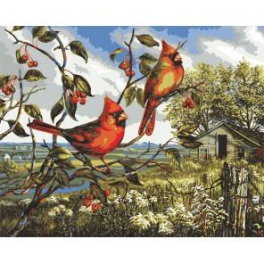 Красное великолепие (художник Донна Рейс) Раскраска картина по номерам акриловыми красками Plaid