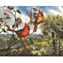 Красное великолепие (художник Донна Рейс) Раскраска картина по номерам Plaid