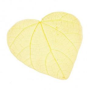 Желтые Листочки скелетированные Украшение для скрапбукинга, кардмейкинга Knorr Prandell