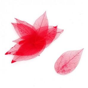 Скелетированные листочки  MAGIC HOBBY арт.TBY-LS-01  цв. красный
