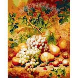 Натюрморт  с виноградом Раскраска по номерам на холсте Menglei