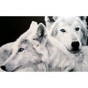 Влюбленные волки Алмазная вышивка (мозаика) Гранни