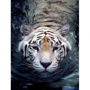 Тигр в воде Алмазная вышивка (мозаика) Гранни