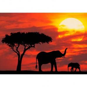 Африканские слоны на закате Алмазная вышивка (мозаика) Гранни