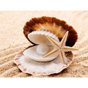 Морские дары Алмазная вышивка (мозаика) Гранни