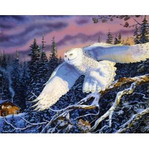Зимней ночью Раскраска по номерам акриловыми красками на холсте Menglei