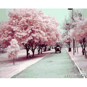Цветущая сакура Раскраска (картина) по номерам акриловыми красками на холсте