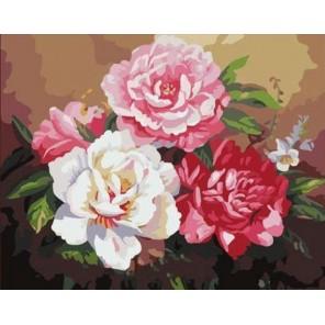 Розы Шебби шик Раскраска (картина) по номерам акриловыми красками на холсте