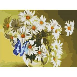 Бабочка в ромашках Раскраска (картина) по номерам акриловыми красками на холсте Molly