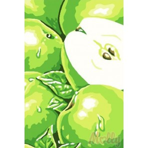 Яблоки Раскраска по номерам на холсте Molly