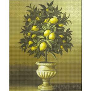 Лимонное дерево Алмазная вышивка (мозаика) Гранни