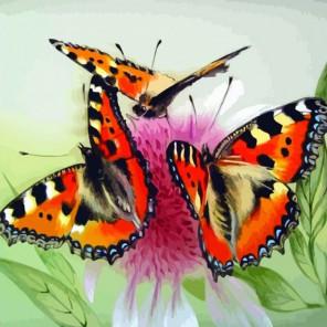 Бабочки на цветке Раскраска по номерам акриловыми красками на холсте Color Kit