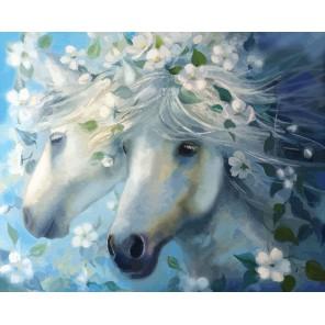 Белые лошади Раскраска по номерам акриловыми красками на холсте Color Kit