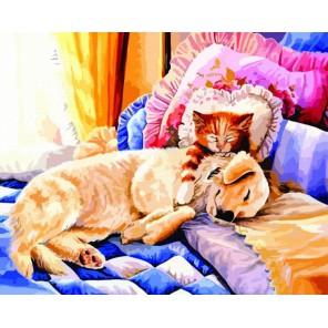 Сладкие сны Раскраска по номерам акриловыми красками на холсте Color Kit