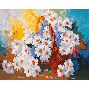 Корзинка с ромашками Раскраска ( картина ) по номерам акриловыми красками на холсте Белоснежка