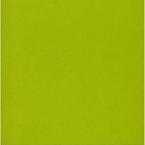 Цвет листвы Кардсток текстурированный для скрапбукинга, кардмейкинга Рукоделие