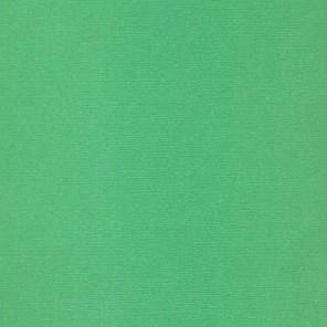 Клевер Кардсток текстурированный для скрапбукинга, кардмейкинга Рукоделие