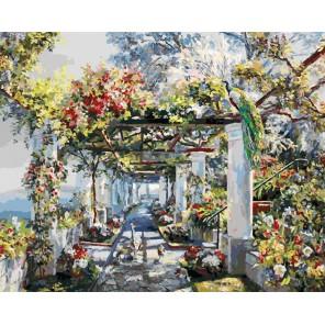 Павлины на прогулке Раскраска ( картина ) по номерам акриловыми красками на холсте Белоснежка