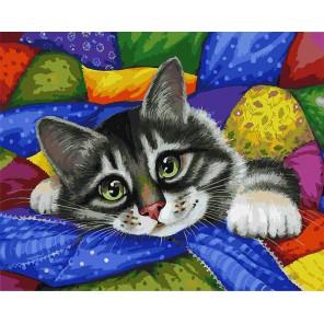 Котик в лоскутках Раскраска ( картина ) по номерам акриловыми красками на холсте Белоснежка