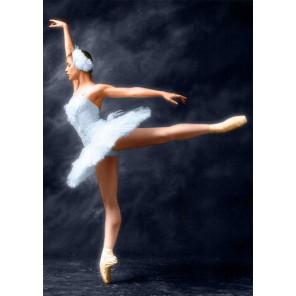 Прима-Балерина Алмазная вышивка (мозаика) Гранни