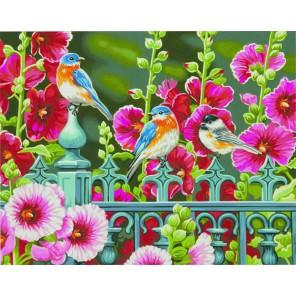 Ворота мальвы Раскраска (картина) по номерам Dimensions