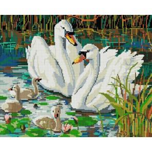 Семья лебедей Алмазная вышивка (мозаика) Белоснежка
