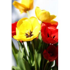 Тюльпаны Алмазная вышивка (мозаика) Цветной