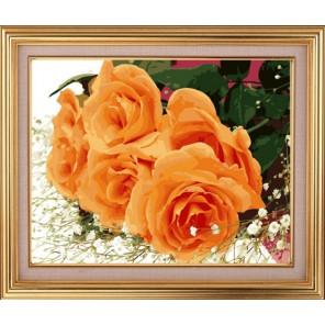 Розы для Вас! Раскраска по номерам акриловыми красками на холсте Color Kit