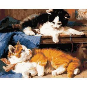Котята Раскраска по номерам акриловыми красками на холсте Color Kit