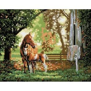 Лошадь с жеребенком Алмазная вышивка (мозаика) Molly