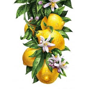 Лимоны Алмазная вышивка мозаика Гранни | Картины алмазной мозаики купить