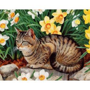 Кот и нарциссы Алмазная вышивка мозаика Гранни
