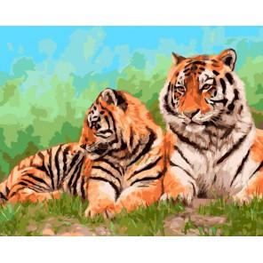 Амурские тигры Раскраска ( картина ) по номерам акриловыми красками на холсте Iteso