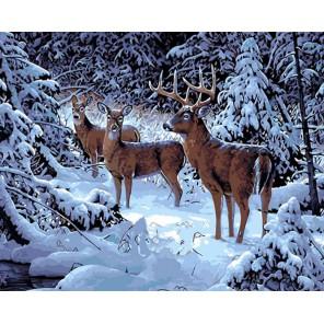 Олени в заснеженном лесу Раскраска ( картина ) по номерам акриловыми красками на холсте Iteso