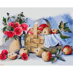 Корзинка с яблоками Раскраска картина по номерам акриловыми красками на холсте Русская живопись