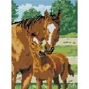 Лошадь с жеребенком Алмазная вышивка мозаика на подрамнике Белоснежка