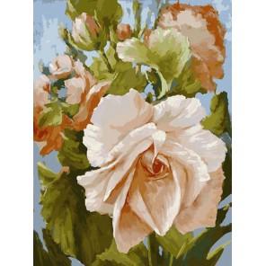 Роза Раскраска картина по номерам акриловыми красками на холсте Белоснежка