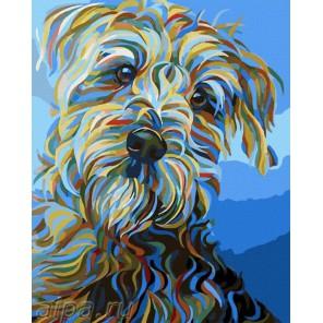 Собака в синем Раскраска картина по номерам акриловыми красками на холсте Русская живопись