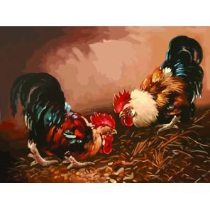 Петухи Раскраска картина по номерам акриловыми красками на холсте Color Kit