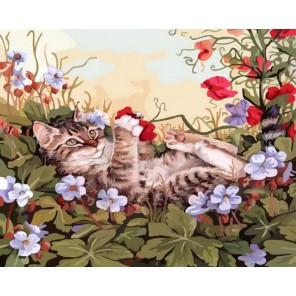 Кошкины забавы Раскраска картина по номерам акриловыми красками на холсте Белоснежка