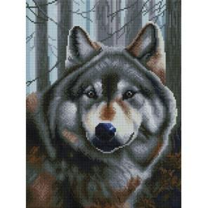 Волк Алмазная вышивка мозаика на подрамнике Белоснежка